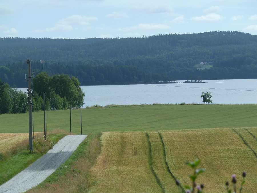 Blick von der Farm auf den See Rødenessjøen