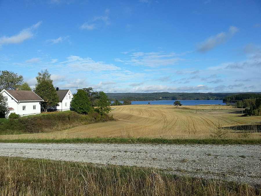 Das Farmgelände liegt idyllisch zwischen Wald und See
