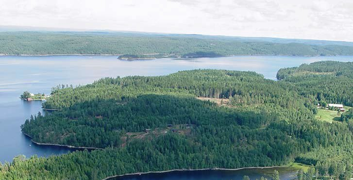 Blick auf den See Stora Le und die umgebenden Wälder
