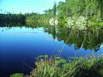 Forellengewässer in Vestfjella - eines schöner als das andere