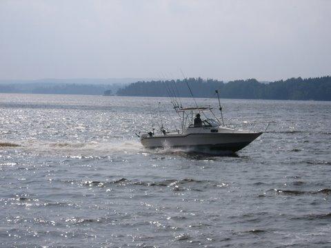 Guide Reidar bietet geführte Touren auf diesem Boot an