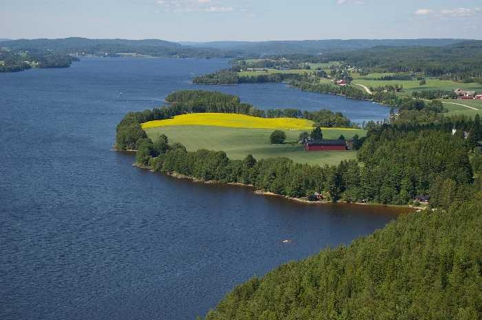 Ein top Angelgewässer - der See Rødenessjøen