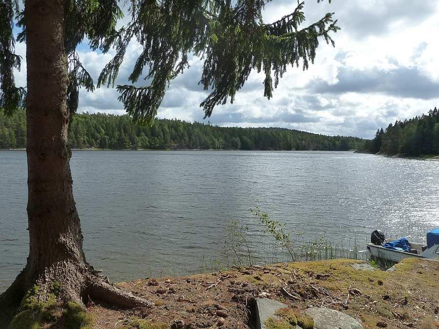 Blick vom Ferienhaus auf den See