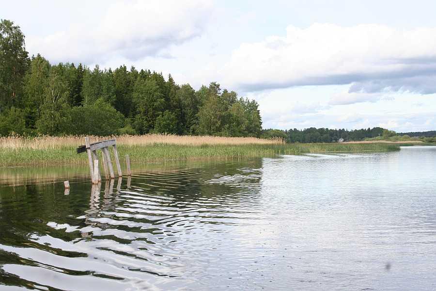 Der See Vansjø hat viele unterschiedliche Gesichter - lange Schilfbereiche...