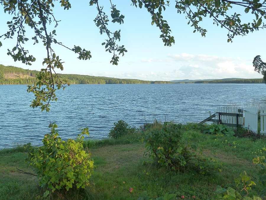 Blick vom Garten auf den See