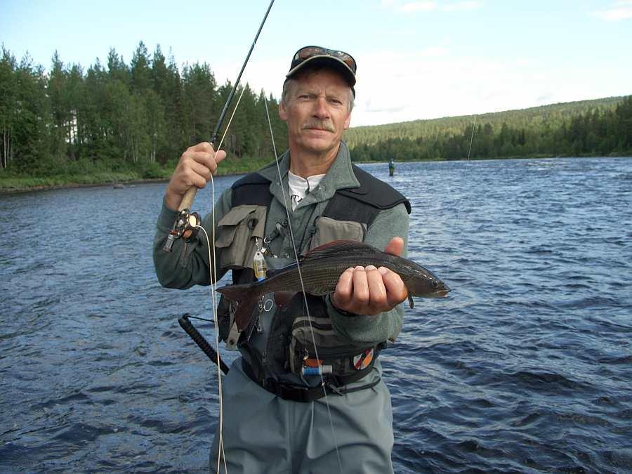 Fliegenfischen auf Äschen..