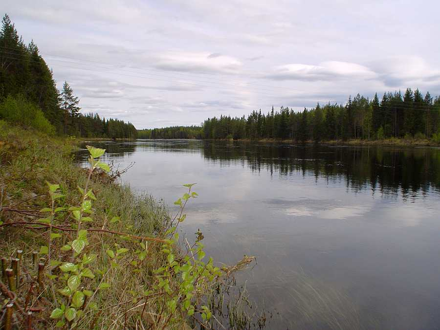 Der Fluß wechselt immer wieder sein Gesicht. Schneller fließende Bereiche und langsamere Zonen wechseln sich ab