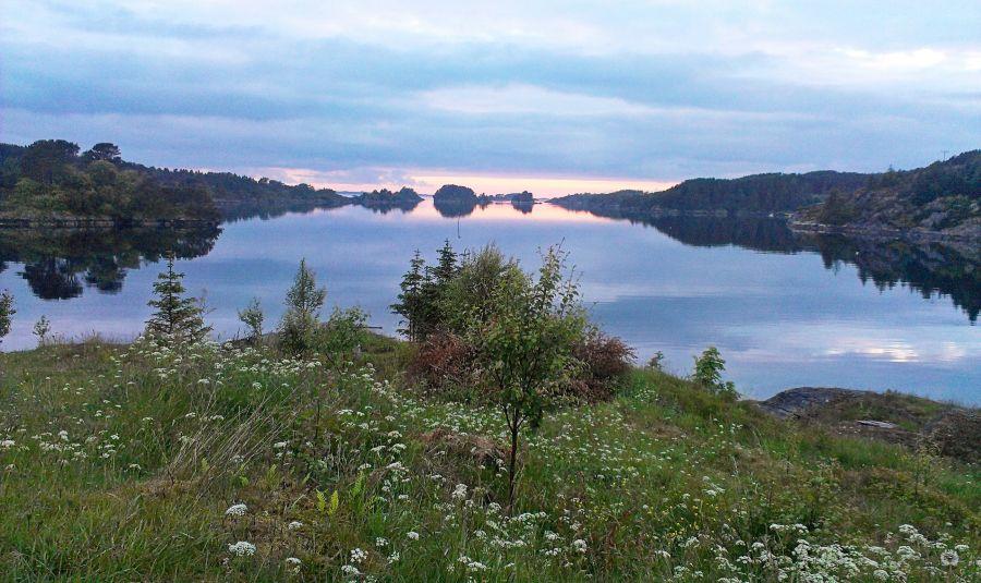 Der Fjord am Morgen...