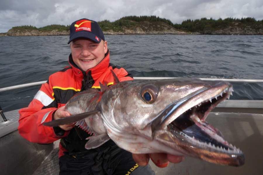Sotra-Tour September 2015: Einer von vielen Seehechten