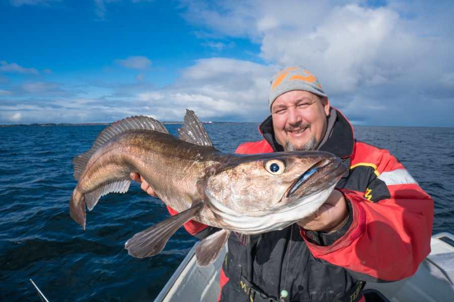 Klasse Seehecht, gefangen im September 2017. Von Ende Juli bis Ende Oktober kommt diese Art hier häufig vor.