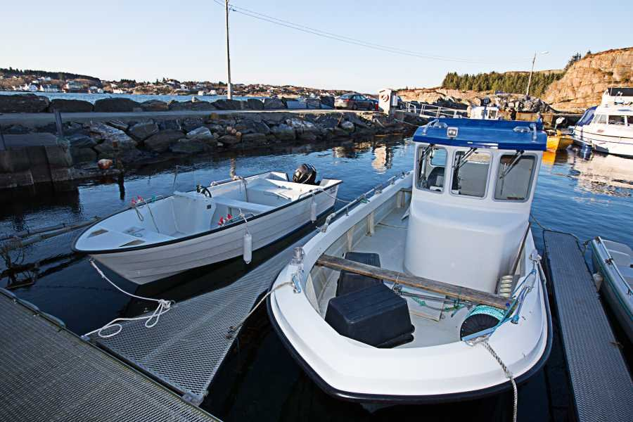 Eines der vielen Highlights: große, moderne Dieselboote mit GPS/Kartenplotter, Echolot und AIS-System.