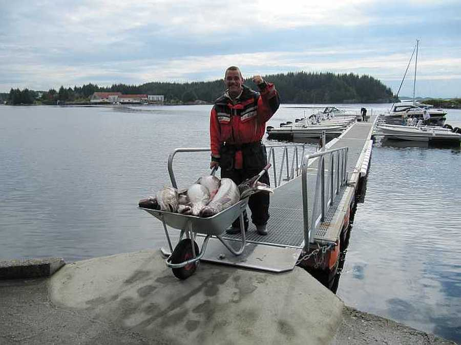 Schubkarren stehen zum Fischtransport bereit