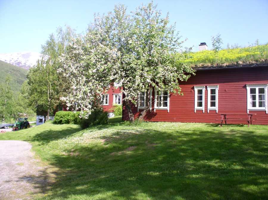 Lensmansgarden - Damals ein Bauernhof, nun eine traumhafte Angelanlage direkt im Hoheitsgebiet der Großköhler!
