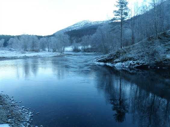 Der Fluss.