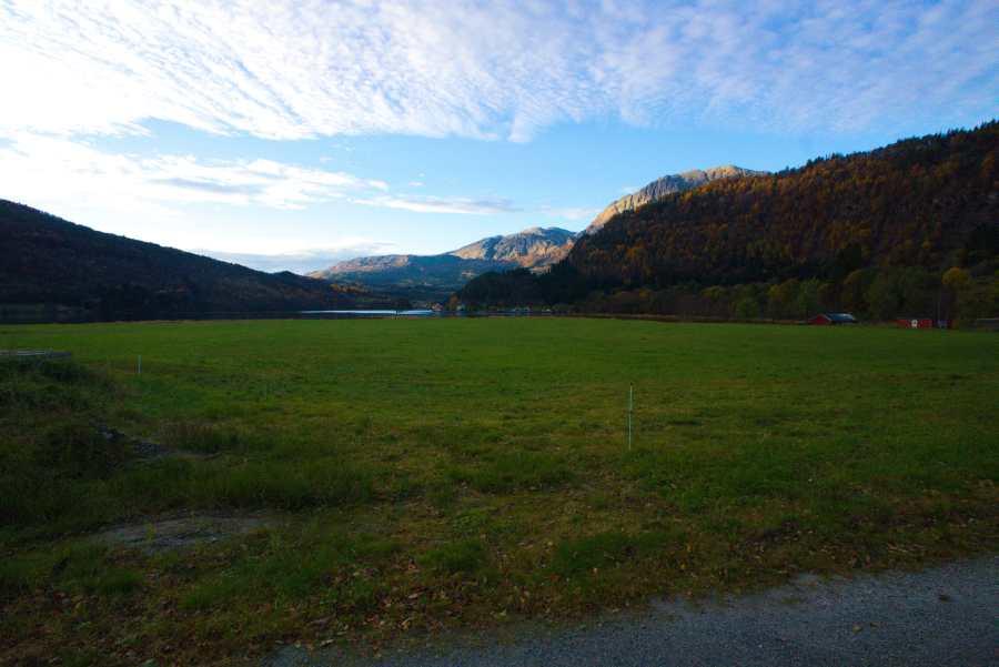 Ausblick vom Ferienhaus auf den Dalsfjord. Wer über die Wiese läuft, steht direkt an guten Uferangelplätzen.