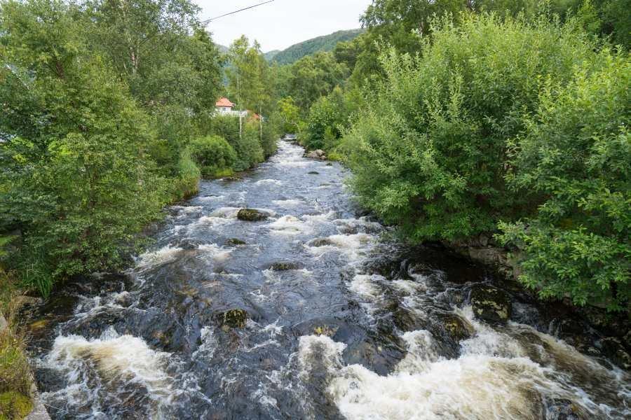 Der Fluss kurz vor der Mündung