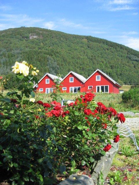 Sie wohnen hier im Fjordtal direkt am Wasser