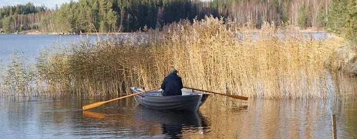 Mit dem Boot an den Schilfkanten entlang schleppen bringt Hecht!