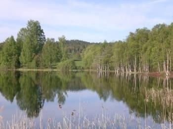 Schweden von seiner schönsten Seite.