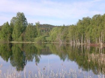 Der Stora Lee ist wohl das beste Hechtrevier Schwedens.