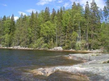 Die schöne Natur Schwedens lädt zu einer entspannten Angelreise ein.