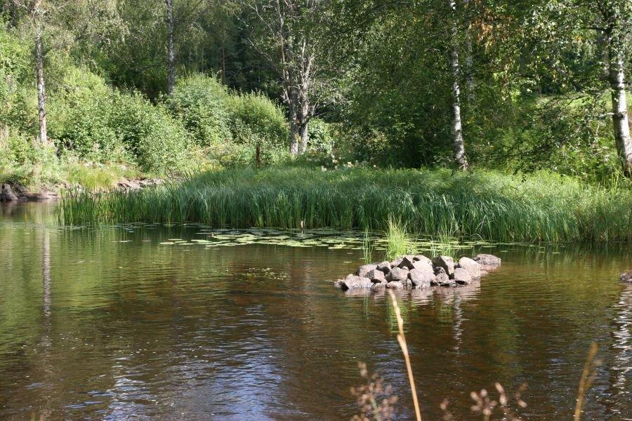 Traumhaft! Die schwedische Natur.
