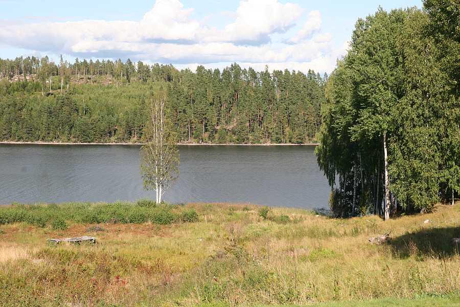 Blick vom Haus auf den See